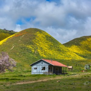 Carrizo Plain, California