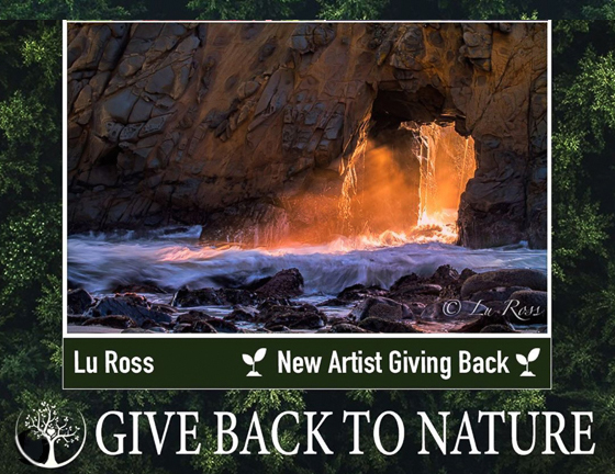 GIVE BACK TO NATURE PROJECT